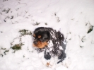 J'adore la neige.