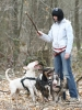 Une vie de chiens_132