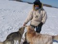 Une vie de chiens_428