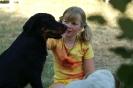 Une vie de chiens_58