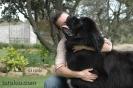 Une vie de chiens_73